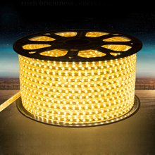 Buy led strip flexible light SMD 5050 220V 60leds/m RGB IP65 Waterproof fita led ribbon tape +EU Power Plug outdoor Home decoration for $3.19 in AliExpress store