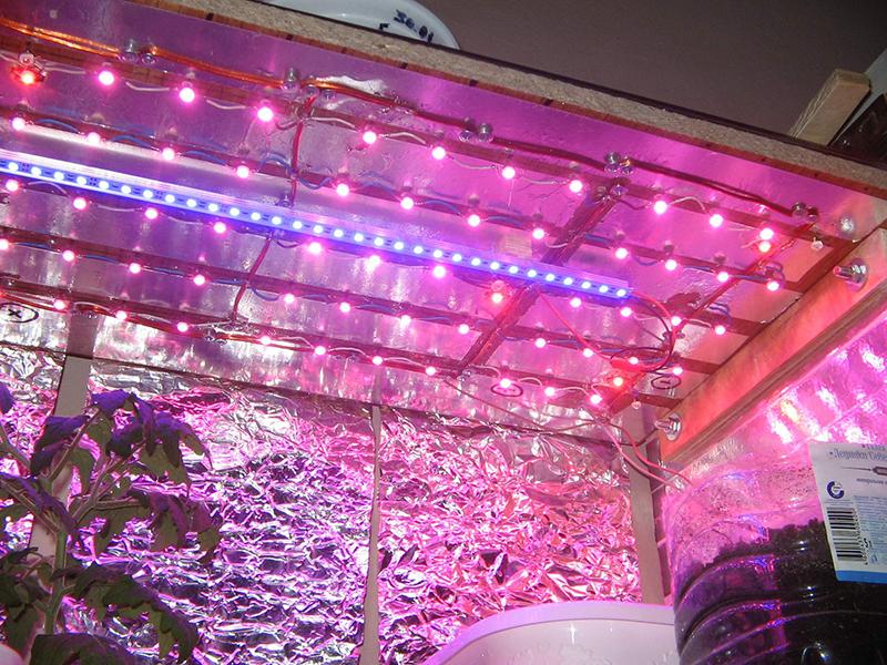 1W-100W LED GROW CHIP-17