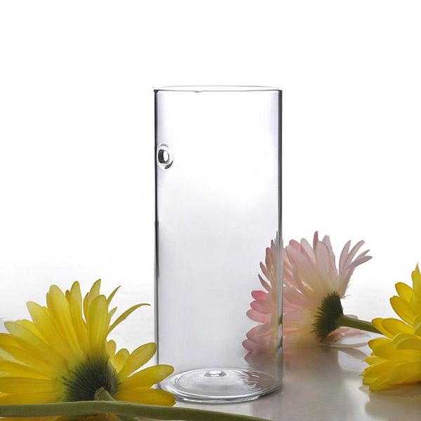 Blumen glasvase werbeaktion shop f r werbeaktion blumen for Hydrokulturpflanzen shop