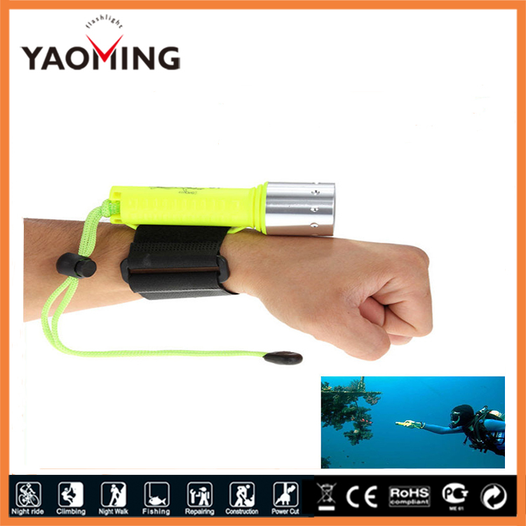 2000LM CREE XML-T6 LED Waterproof underwater Dive Diving Flashlight Dive Torch light 50 meter lamp for diving lantern by 18650(China (Mainland))