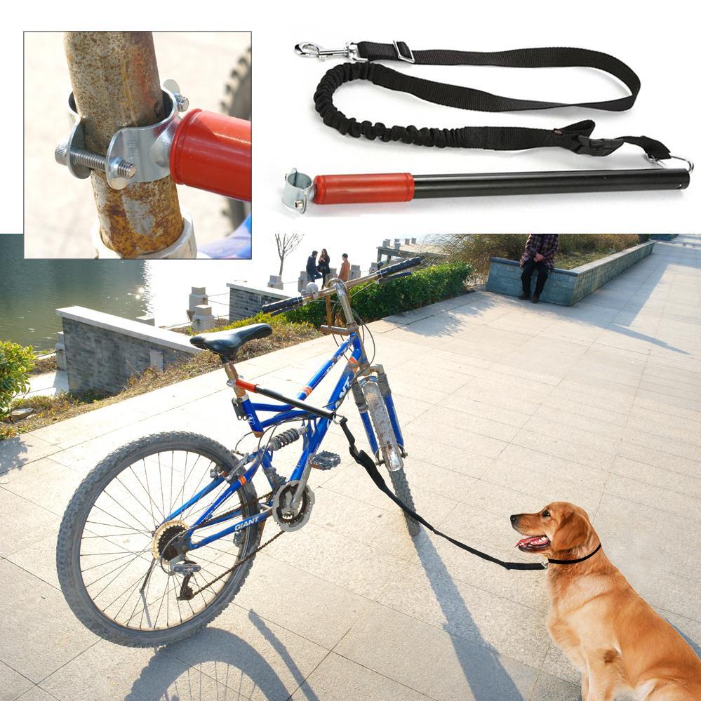 выгуливание пса на поводке проводка воблера