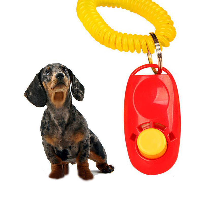1pcs High quality Pet Dog Training Adjustable Sound Key Chain Dog Clicker Three Color Randomly Selected(China (Mainland))