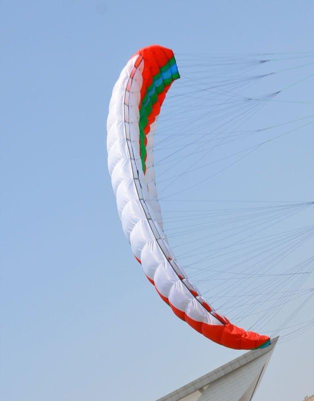 8.0sqm Zero Sword power kites,snow kites,foil kites+handle+4x25m 500lbs dyneema line(China (Mainland))