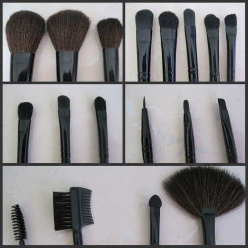 Wholesale Professional 18 PCS Cheap Makeup Brush Set/ makeup brushes with leather case, Free Shipping(China (Mainland))