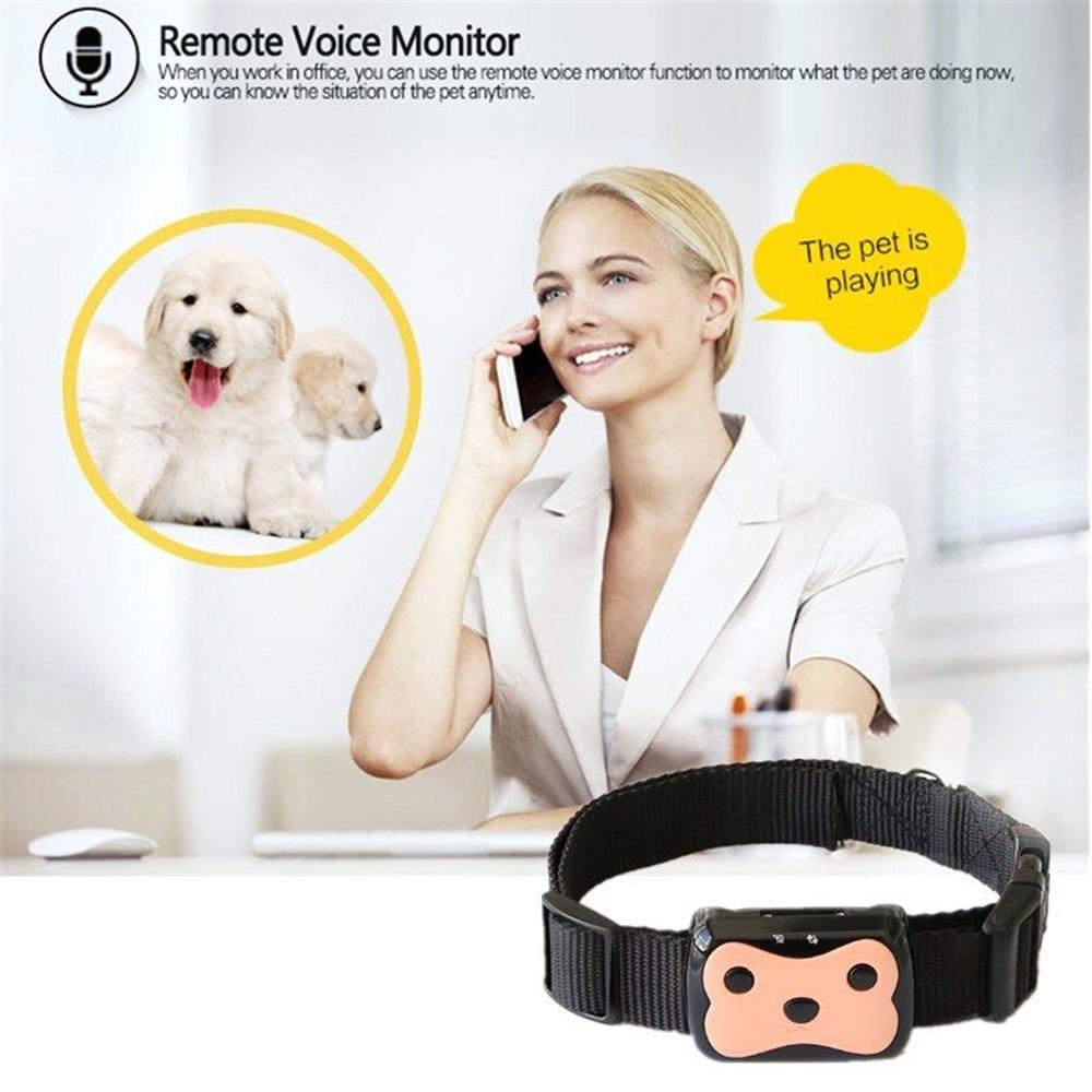 1Pc Mini Dog Cat Collar Pet ID Locator Real Time GPS Tracker GSM Tracking Waterproof(Hong Kong)