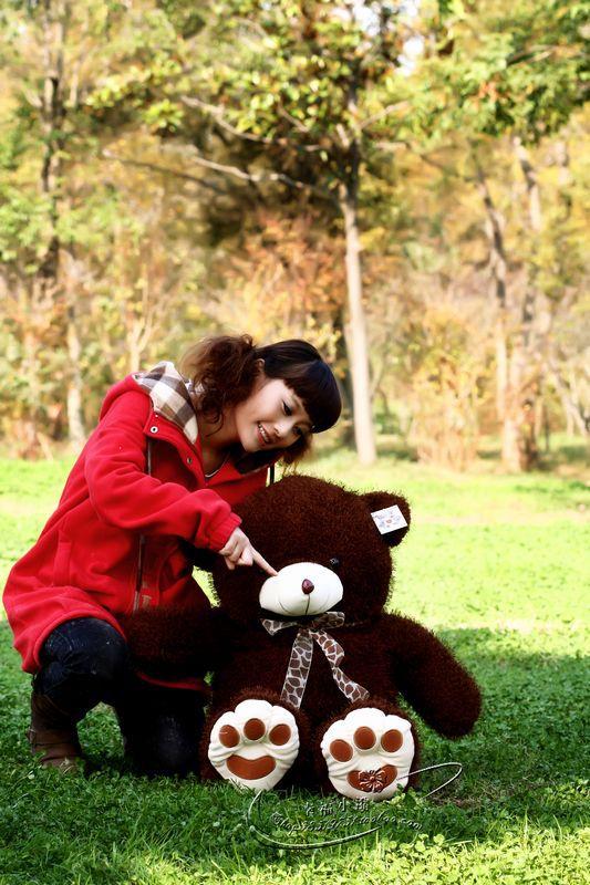 dark brown  bear about 80cm teddy bear doll plush toy t9647<br><br>Aliexpress