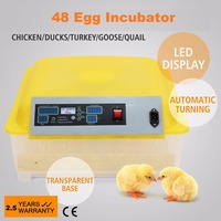160W Automatic 48 Eggs Incubator cheap Chicken DUCK GOOSE QUAIL hatchery machine Poultry Hatcher 110V to 240V free shipping