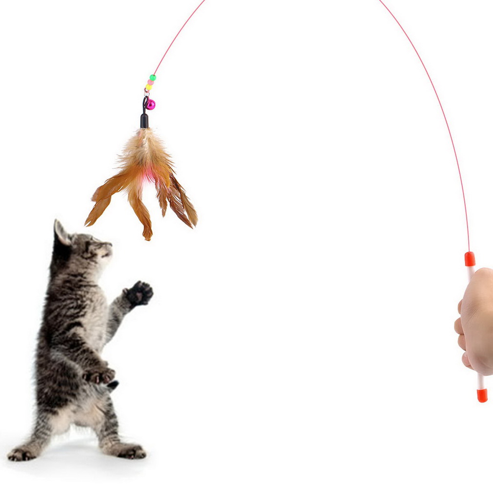 Kitten cat pet toy wire chaser wand teaser feather with for Cat wand toys