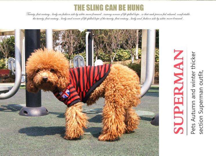 British Flag Pet Dog