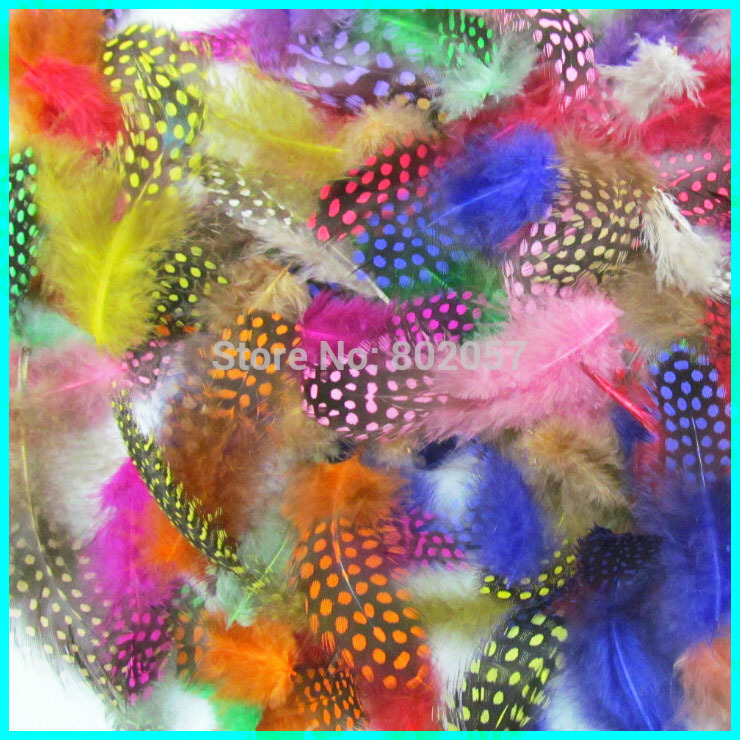 Colorful Petite Feather, 5-8 CM 500 Pieces Dot Dyed Guinea Fowl Feather , Feather Fabulous For Bags And Purses(China (Mainland))