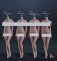 1 6 Scale Female Suntan Color Body Super Flexible Seamless Figure with Stainless Steel for Phicen
