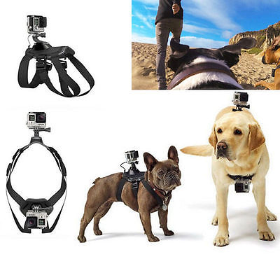Dog Fetch Hound Harness Chest Shoulder Strap Belt +Mount +J Hook +screw for GoPro Camera Hero 4 3+ 3 SJ4000 free shipping(China (Mainland))