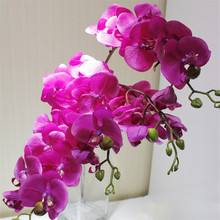 """6pcs 75cm/29.53"""" Real Touch Butterfly Orchid Phalaenopsis Artificial Latex Orchids Flower For Wedding Decoration Wholesale(China (Mainland))"""