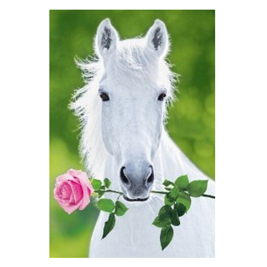 White horse hot sale home decor movie wall poster custom - Home interior horse pictures for sale ...