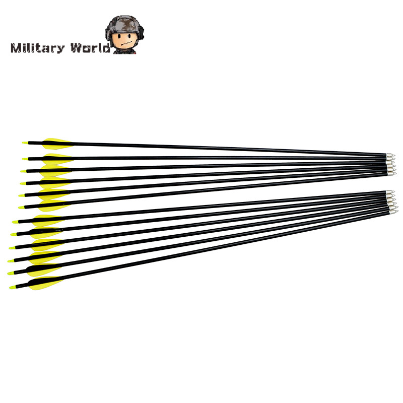 12pcs pack Shooting Archery Sports 80cm Fiberglass Arrows W Nocks Proof Fiber Glass 15 80lbs For