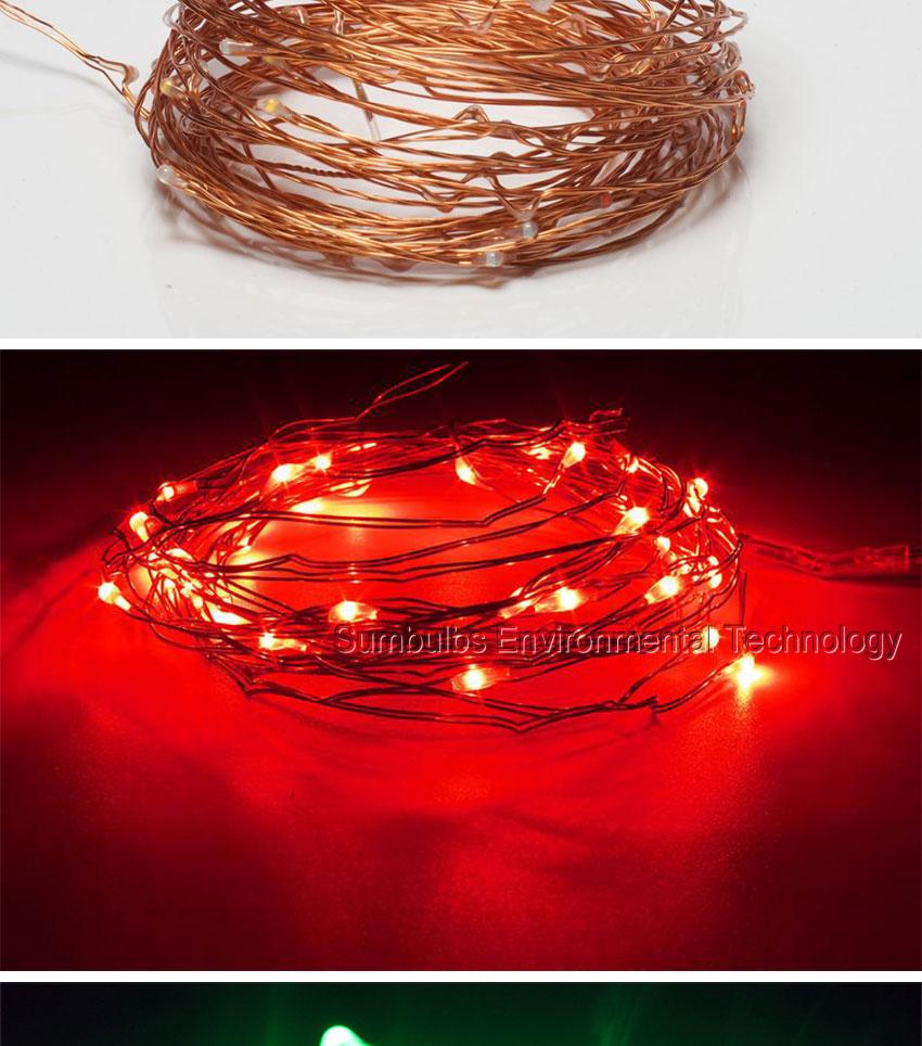 cooper wire led string light  (7)
