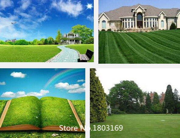 2016 Lawn Turf Seed 500pcs Grass Seeds Fresh Green Soft Runner Turfgrass for home park soccer golf place free shipping Mix Colo(China (Mainland))