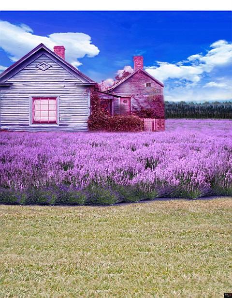 Здесь можно купить  300CM*200CM(about 10ft*6.5ft) fundo Chalet flowers blue sky3D baby photography backdrop background LK 1881  Бытовая электроника