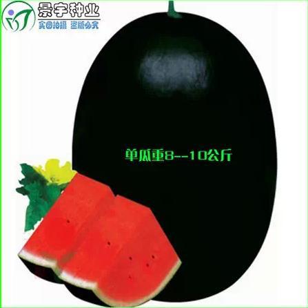 100% survive ,100pc/pack Fruit seed ,watermelon seeds ,Garden supplies Bonsai Black Beauty melon - MEIBEADS-Diy Jewelry Making Supplies Store store