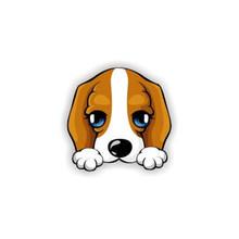 Acrilico broche Animale Spille cane Spille Cartoon Spilla per Le Donne Spilli Distintivi e Simboli Vestito Da Modo Del Cappotto Accessori Dei Monili(China)