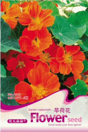 1 Original Pack, 6 seeds / pack, Red Garden Nasturtium Shamrock Plant Tropaeolum Majus #A017(China (Mainland))