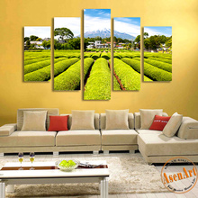 Buy Modern Canvas Art 5pcs Green Tea Garden HD Canvas Prints Painting Unframed Landscape Wall Paintings Livng Room Wall Picture for $28.56 in AliExpress store