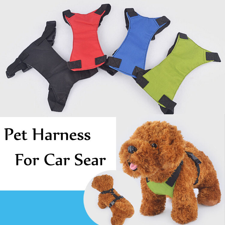 car harness dogs car get free image about wiring diagram. Black Bedroom Furniture Sets. Home Design Ideas