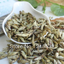 GRANDNESS 2013 yr Spring bud Sprouts Loose White Pu Er Wild Tea RAW Sheng Fresh