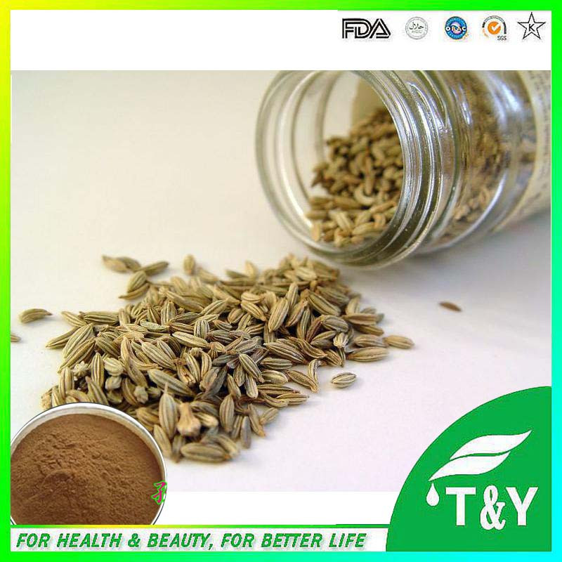 Cumin Seed Extract powder/GMP factory supply top quality Cumin powder/<br><br>Aliexpress