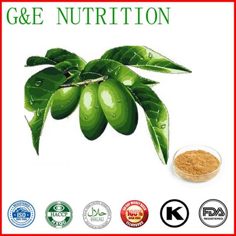 Olive Leaf Extract  oleuropein 10:1 800g<br>