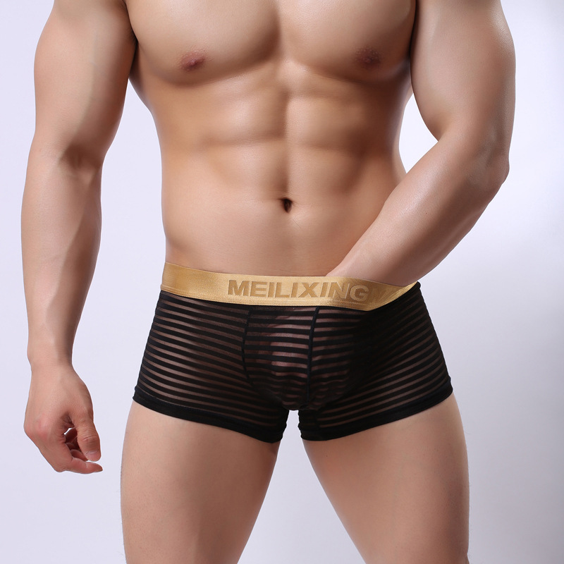 Mesh See Through Transparent sexy Men Panties Sexy Sheer Men's underwear Boxers Sexy Gay underwear men shorts size XXL(China (Mainland))