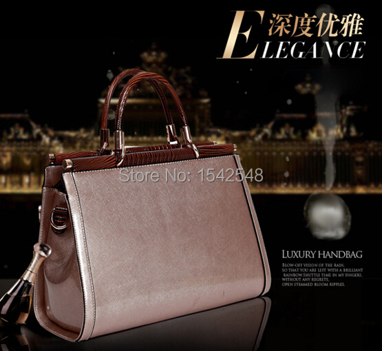 Sell Ladies Business Bag Champagne Color Shell Handbags Luxury Elegant Medium Size Zipper Closer Free Shipping(China (Mainland))