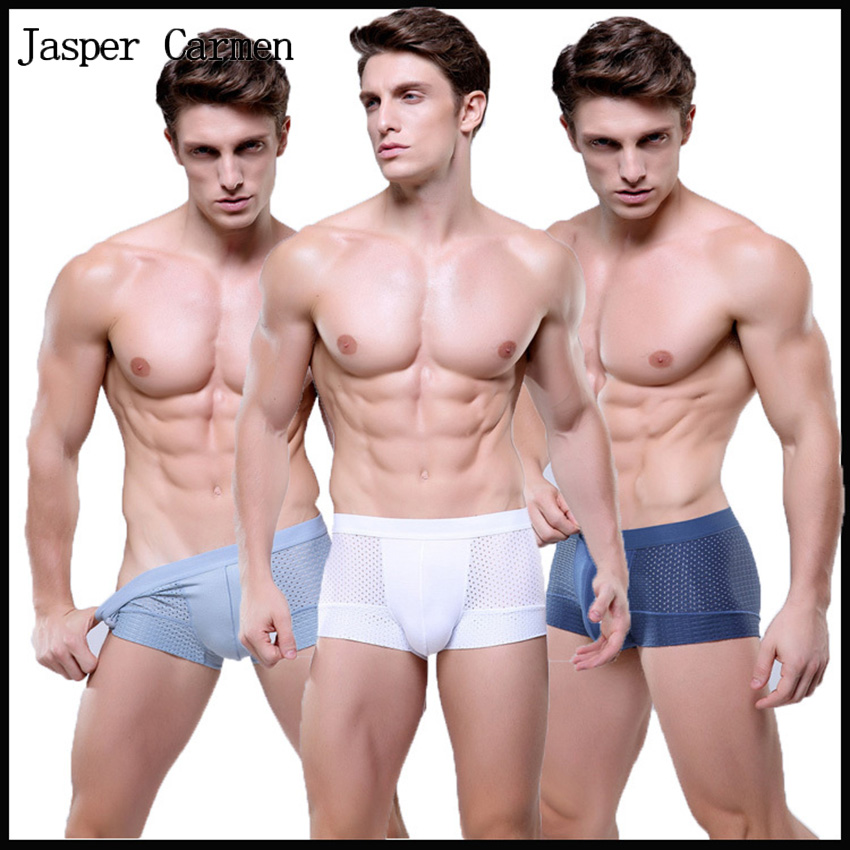 Free Shipping Men's underwear boxers 1pc sale Modal Sexy men's Mesh Boxer Shorts men's underwear Free size 6.9(China (Mainland))