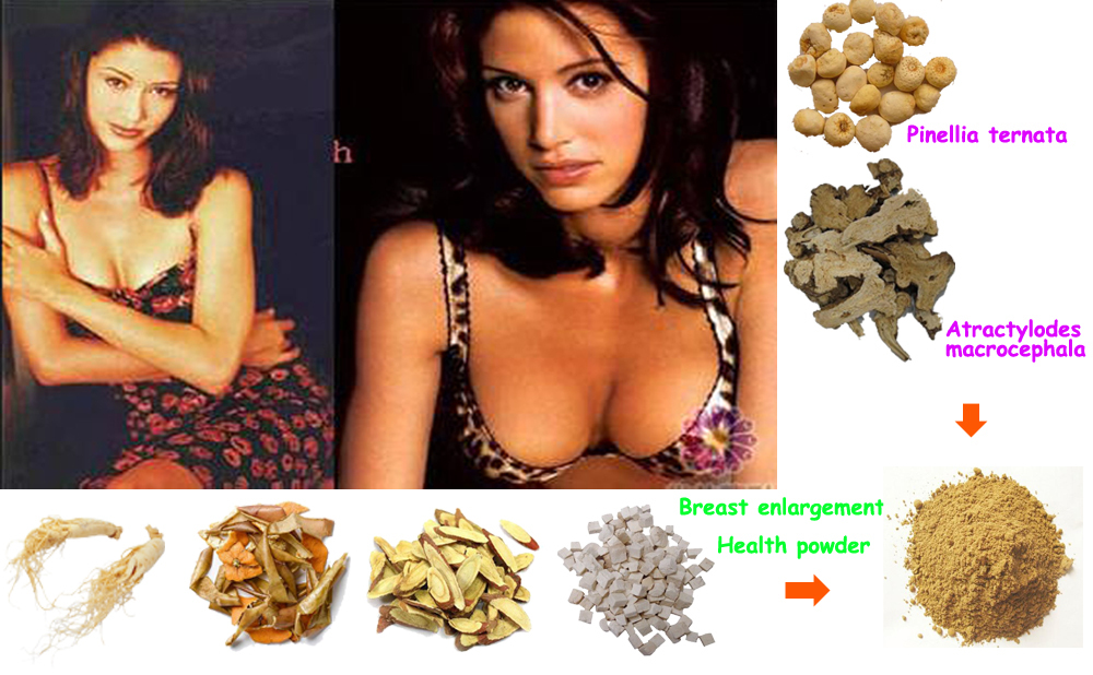 Breast Enlarge Powder of Natural Herbal Extraction, Stimulate from A Cup to C Cup, Improve Breast Volume, Support and Elasticity(China (Mainland))