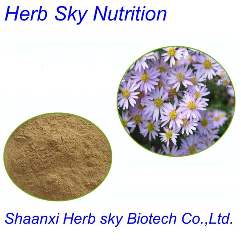 Pure Natural Tatarian Aster Extract 10:1<br><br>Aliexpress