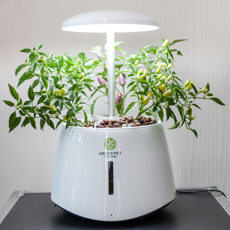 Automatic Hydroponic Plant Growth Machine Led Grow Lights Indoor Garden With Gourmet Herb Seed