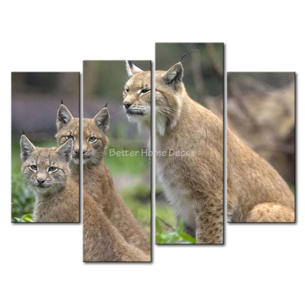 3 Piece Wall Art Painting Lynx In The Grass Picture Print On Canvas Animal 4 5 The Picture Decor Oil For Home Decoration Prints(China (Mainland))