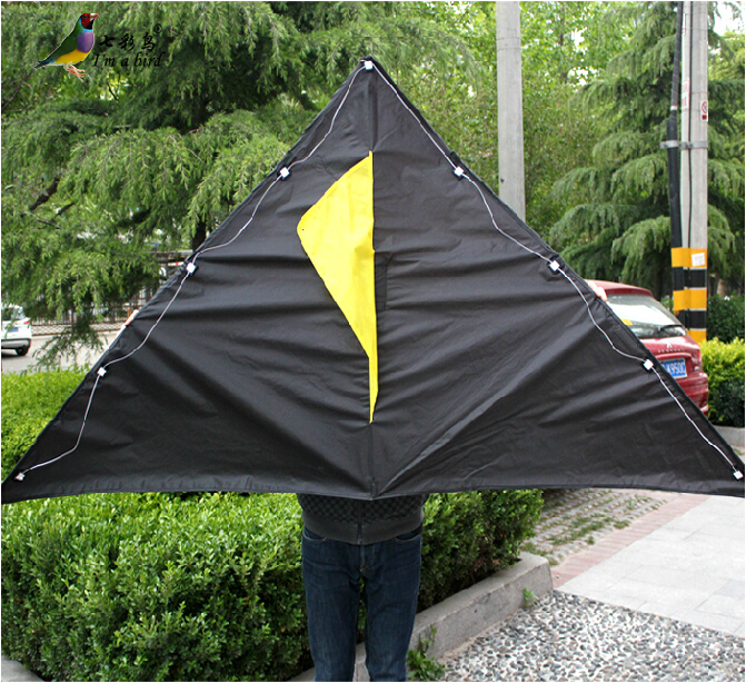 Free Shipping Outdoor Fun Sports 2015 New 2m Power Trangle LED Kite / Luminous Kites With Handle And Line Good Flying(China (Mainland))