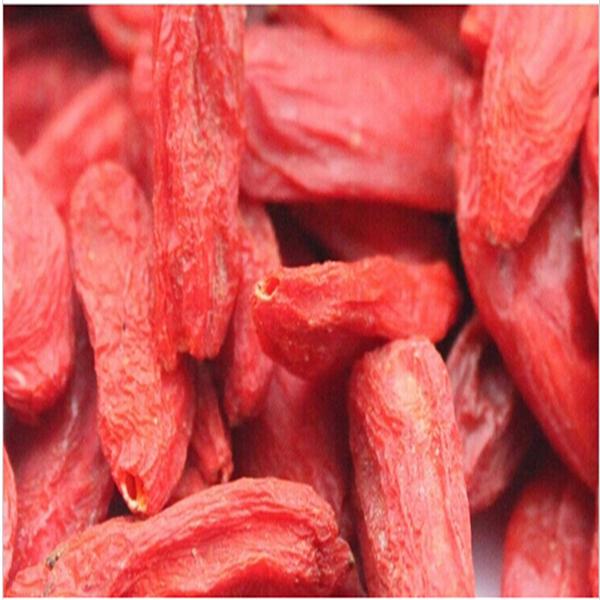Chinese 800g pack Natural Goji Premium Organic Goji Berry Dried Lycii Wolfberry Tea Healthy Herbal Tea