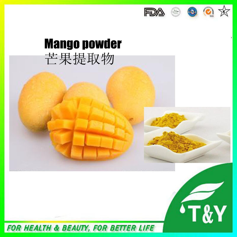 Concentrated Fruit Flavor Artificial Mango Flavor Powder 200g/lot(China (Mainland))