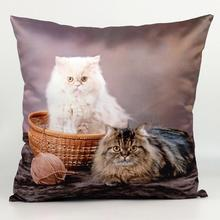 European Long-haired Cats 3d Printing Sofa Throw Pillow Covers