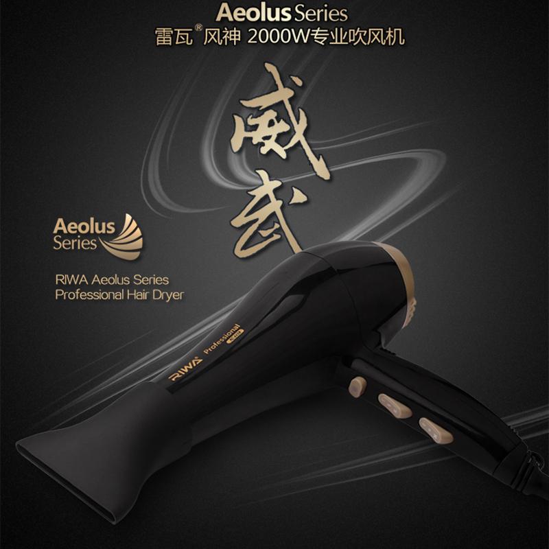 Riwa Aeolus series professional hair dryer Low noise 2000W high power anion ceramic hair dryer for salon(China (Mainland))