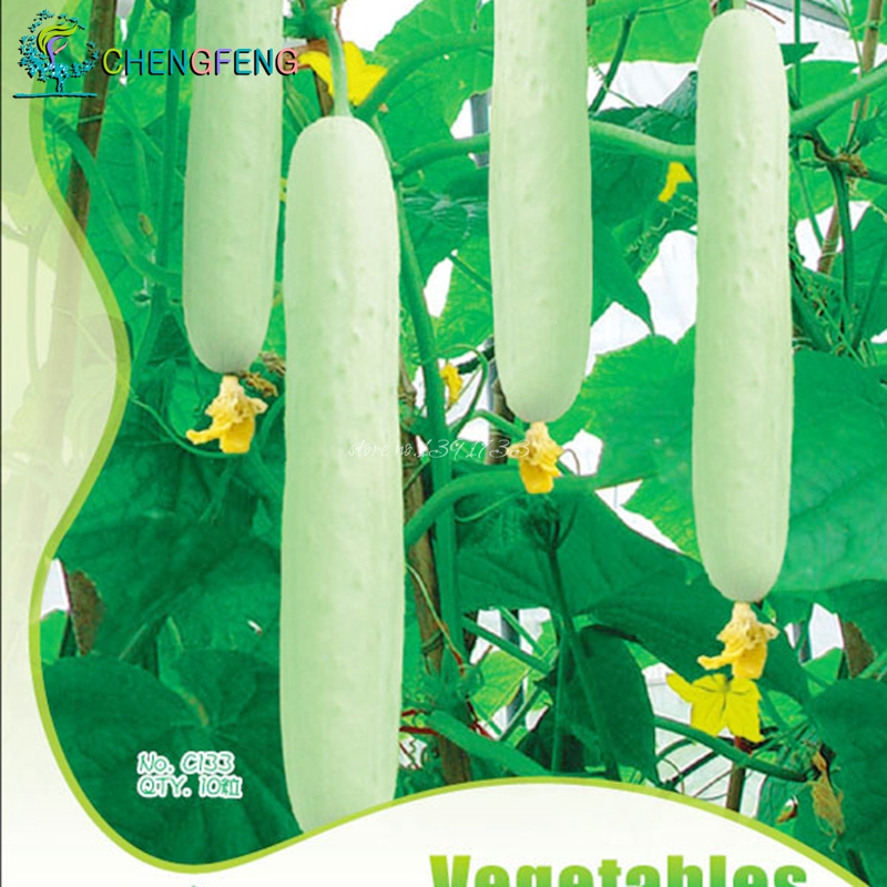I want white cucumber seed germination of vegetable seeds yielding Spring planting cucumber heat 10 / pack Free Shipping(China (Mainland))