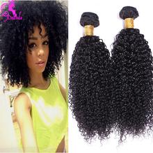 Mongolian Kinky Curly Hair 3 Hair Bundles Wet And Wavy Natural Curly Weaves Human Hair Mongolian Afro Kinky Curly Hair Ali Moda