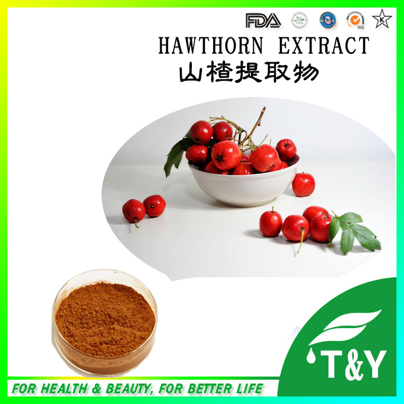 Chinese new harvest Hawthorn Extract, Hawthorn Berry Extract  Flavone 600g<br><br>Aliexpress