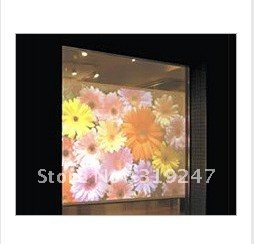 Most Professioanal+Trusted Supplier!! Top Quality Holographic Screen 3D For Window Shop Advertising!(China (Mainland))