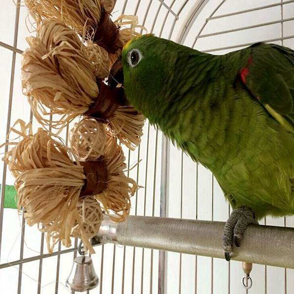 Funny Pet Playing Toys Bird Parrot Chewing Biting Toys Natural Lafite Grass Conure Cockatiel Cage Swing(China (Mainland))