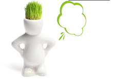 4 Shape Choose Diy Mini Novel Bonsai Grass Doll Hair White Lazy Man Plant Garden