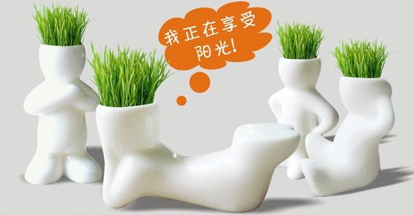 New 1Piece Creative Gift Plant Hair man Plant Bonsai Grass Doll Office Mini Plant Fantastic Home Decor pot+seeds 4 design(China (Mainland))