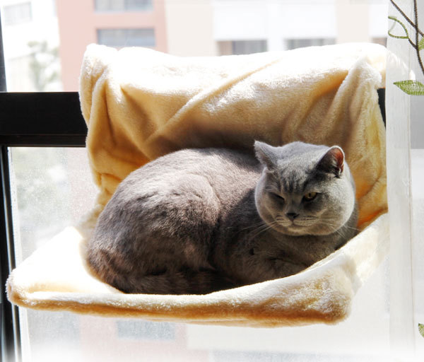 2015 New Arrival Super Soft Pet Cat Sleeping Bed Multifunction Pet Products Cat Bed Cage Bed Small Pet Hang On Hammock(China (Mainland))